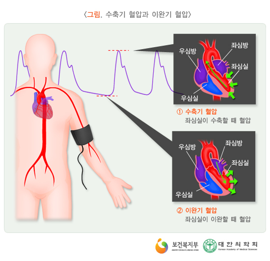수축기혈압과이완기혈압