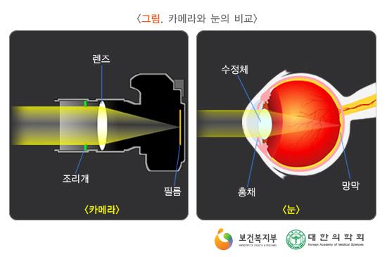 카메라와눈의비교