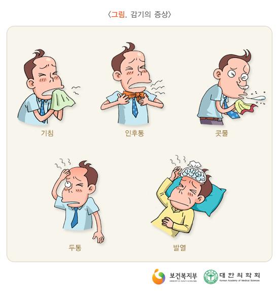 감기의증상
