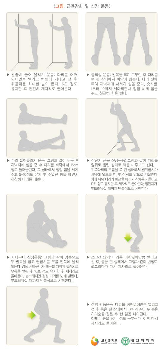 근육강화및신장운동