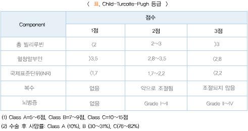 간기능의등급(Child-Turcotte-Pugh등급)