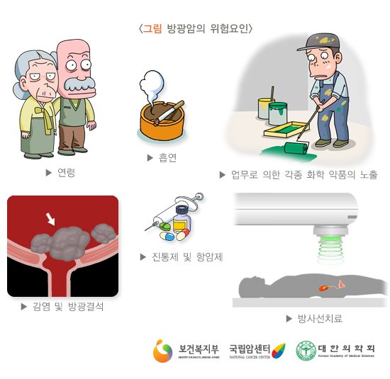 방광암의위험요인