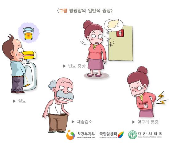 방광암의일반적증상