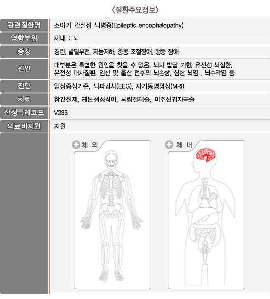 레녹스-가스토증후군_질환주요정보